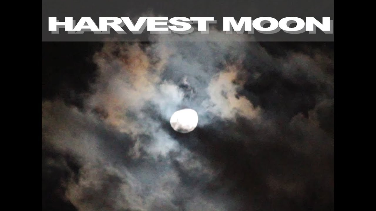Lightning Storm with Heavy Plasma Discharge During a Full Harvest Moon: Holographic Projected Clouds