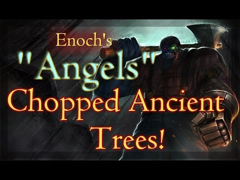 Enoch's angels chopped down the Ancient Giant Trees!