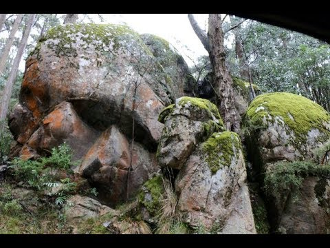 Pre Flood Titan / Giant / Nephilim Fossils All Over The Face of The Earth, PT  4