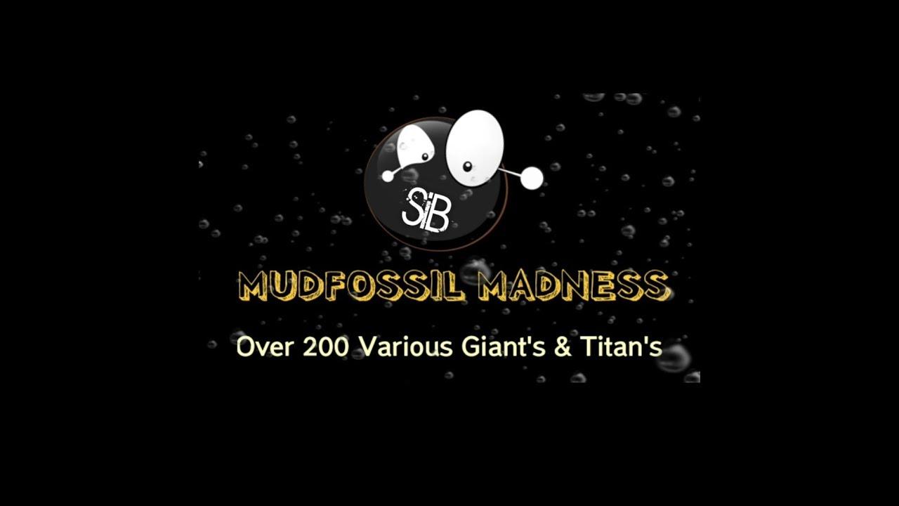200 Various Mudfossils of Giant's & Titan's