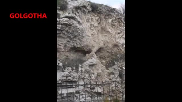 Pre Flood Giant   Titan Fossils All Over The Face of The Earth, PT 1